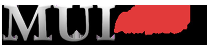Amiga – Une nouvelle version de MUI 5.0 disponible